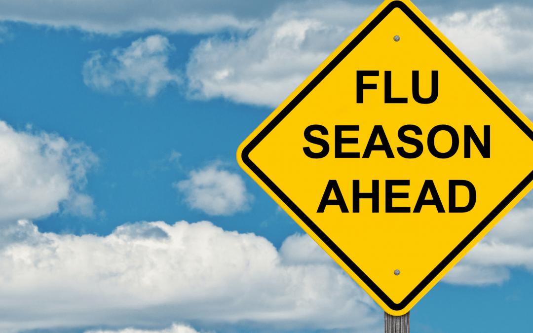 Seasonal Influenza 2021/22